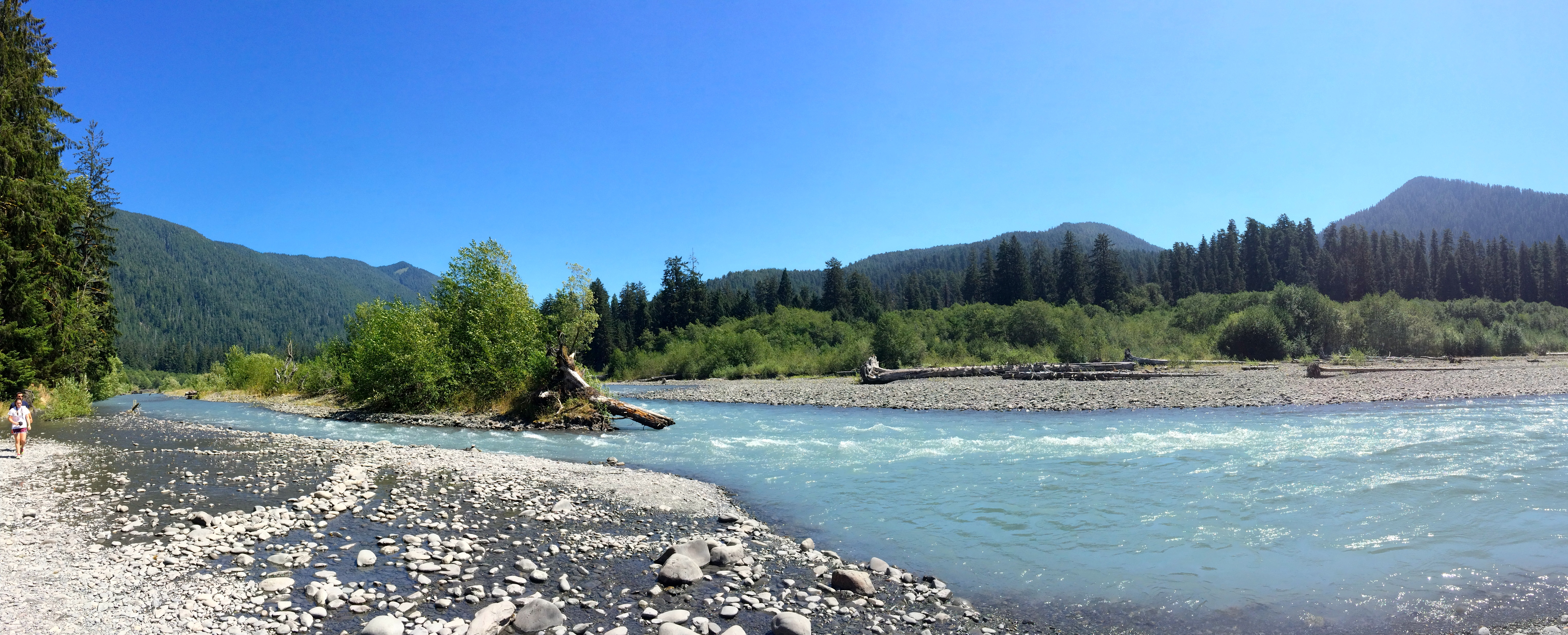 The Hoh River, Olympic National Park