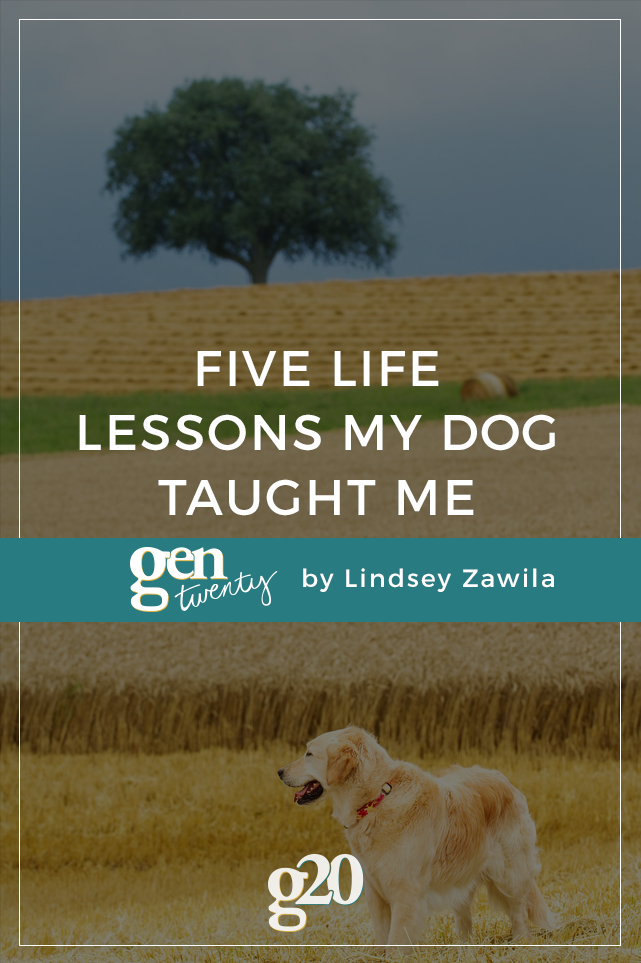 5 Life Lessons My Dog Taught Me