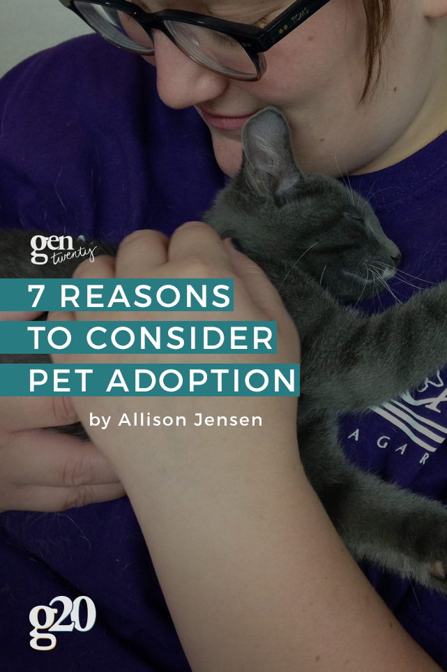 7 Reasons to Consider Pet Adoption